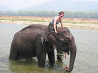 Nepal Royal Safari